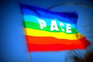53^ giornata mondiale della Pace, l'amministrazione augura buon anno!